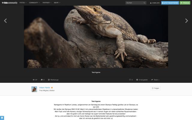 Olympus Fotosommer Case Study - Ergebnis & Feedback 9